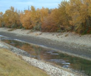 Fall irrigation canal