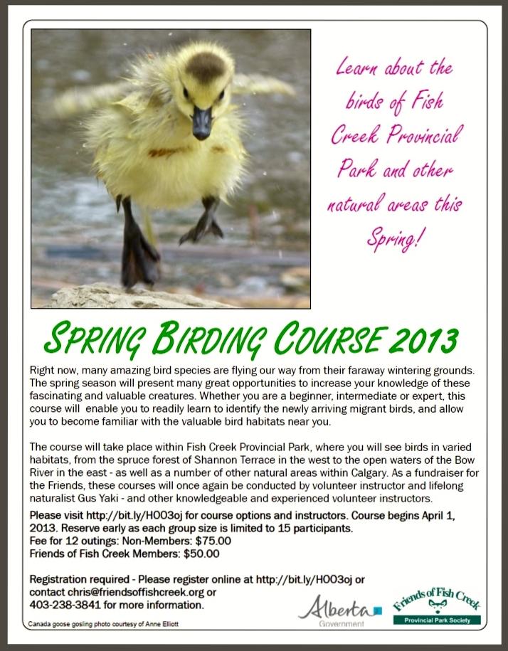 Spring Course 2013 (2)